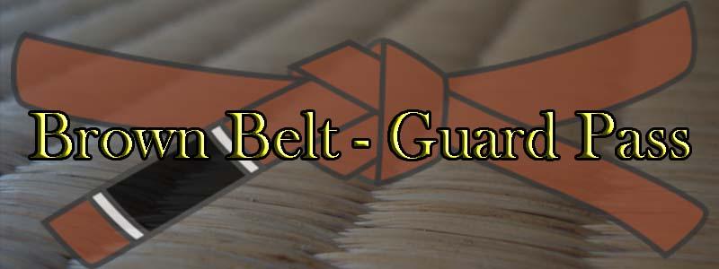 Brown Belt Passing