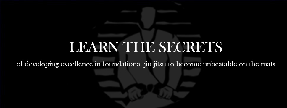 Join the only online training program specifically for White and Blue belts