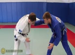 AJ Sousa Series 8 - Flying Triangle / Armbar