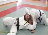 Xande's Collar Guard Series 10 - Loop Choke