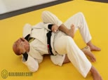 Xande's Defensive Series 5 - Escaping the Back to Half Guard