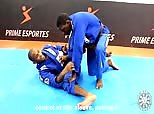 Terere Seminar 7 - Spider Guard Wing Sweep Variation