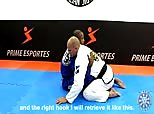 Terere Seminar 3 - Butterfly Switchback Sweep