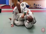 Rolling Sessions 2 - 50/50 Positional Sparring with Xande and Rafael Lovato Jr