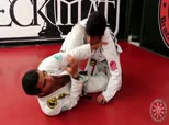 Rico Vieira Competition Techniques 6 - Black Belt Champ Techniques, Z Guard Knee Shield to Rollover Sweep or Omoplata and Butterfly Guard Concepts and Options