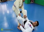 Romulo Barral Spider Guard Series 5 - Transitions between Spider Guard, De la Riva Guard, and Sit Up Guard