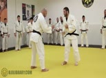 Travis Stevens Judo for BJJ 2 - Closing the Distance