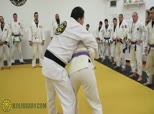 Ribeiro Self Defense 4 - Guarding with Your Elbows